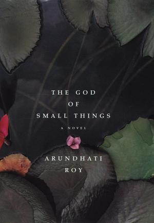 The God of Small Things - Foreign language novels